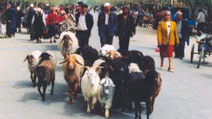 維吾爾人民(Todenhof - CC BY-SA 2.0)