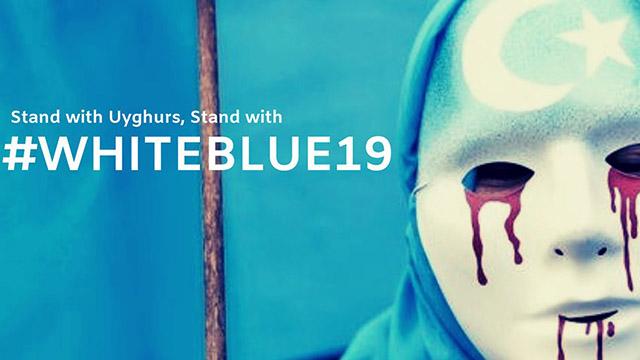 和平抗議活動#WhiteBlue19