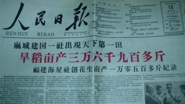 「大躍進」年代,人民日報刊登報道吹噓湖北麻城早稻畝產36,900多斤(推特圖片)