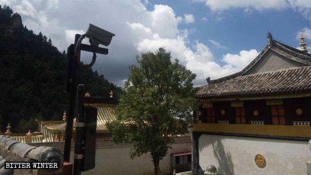 安裝在佑寧寺院內的監控攝像頭