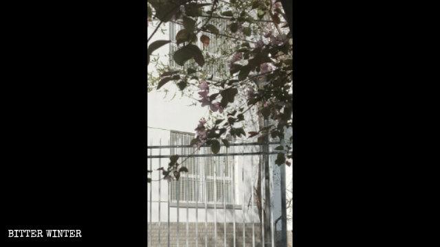 轉化營的窗戶裝有防護欄和鐵絲網