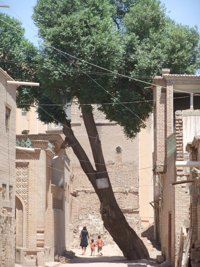 新舊房子混在一起,舊房子大都被毀成了一堆瓦礫。喀什 2012年