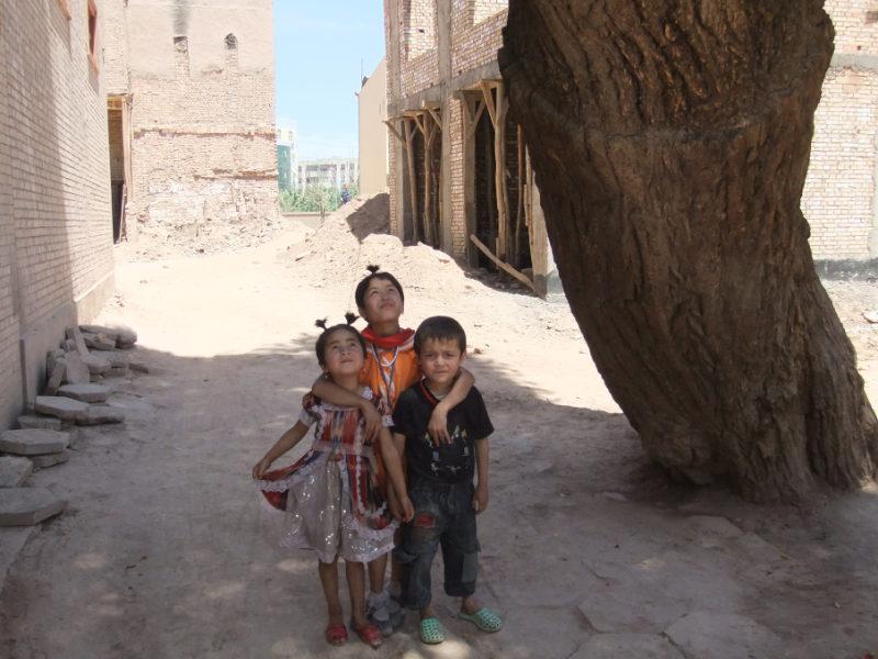 孩子們在剛開始建造的新房子工地上玩耍,旁邊的老樹在文革期間也見證過類似的情況。 喀什 2011年