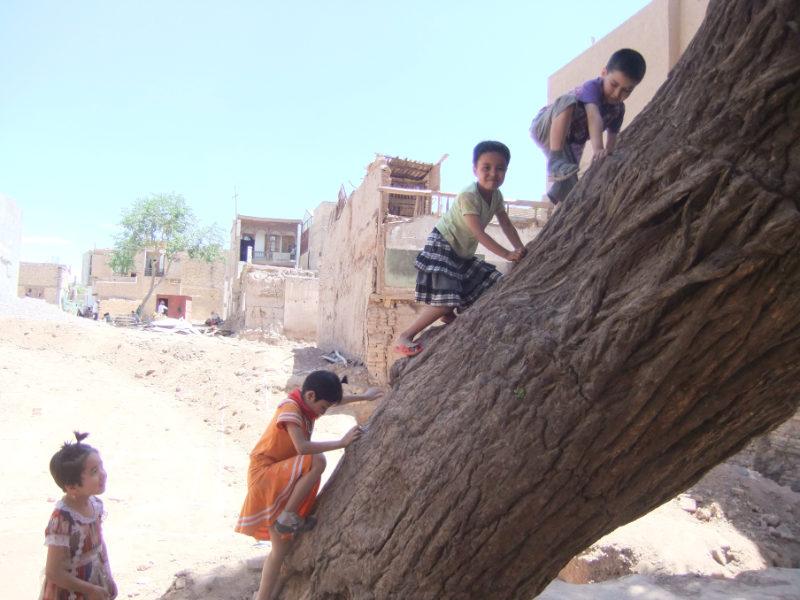 孩子們在剛開始建造的新房子工地上玩耍,旁邊的老樹在文革期間也見證過類似的情況。喀什 2011年